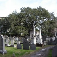 Charleston's Best Tours