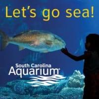 Aquarium South Carolina Charleston Gateway