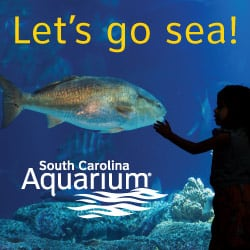 Aquarium South Carolina Charleston Gateway
