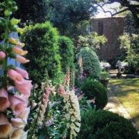 Experience Mrs. Whaley's Garden with the Gentleman Gardener