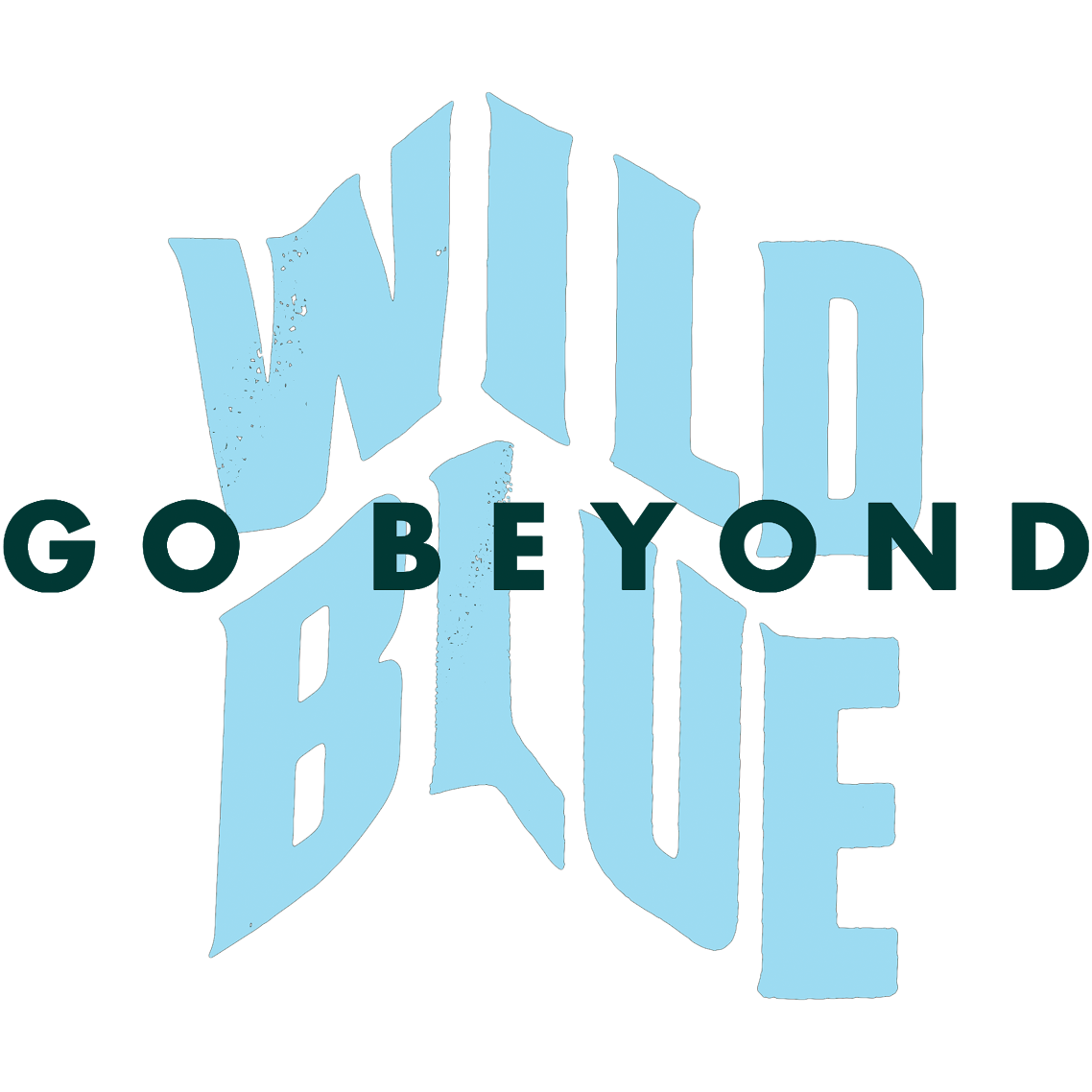Wild Blue Ropes (ropes course)